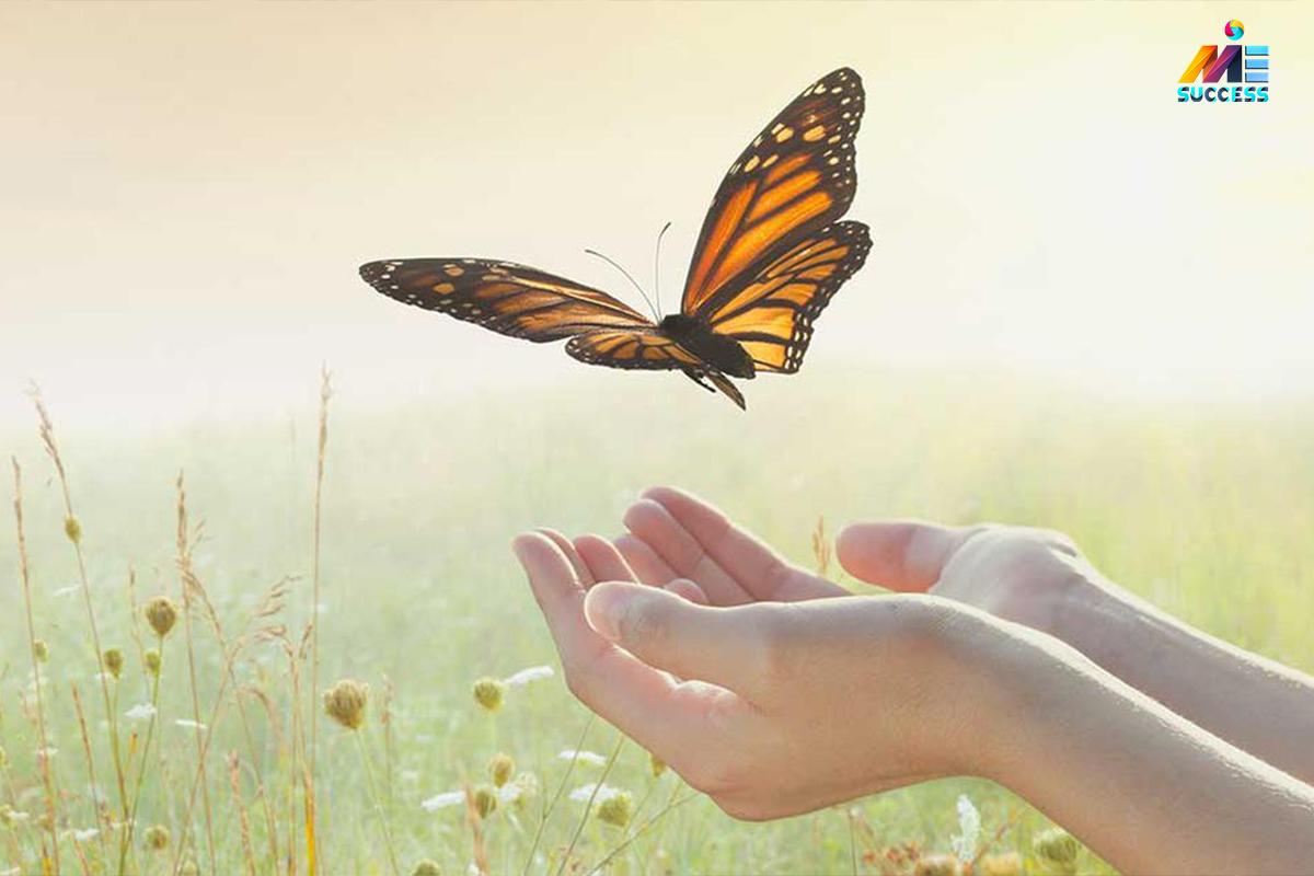 قانون جذب و تحقق آرزوها و شکرگزاری